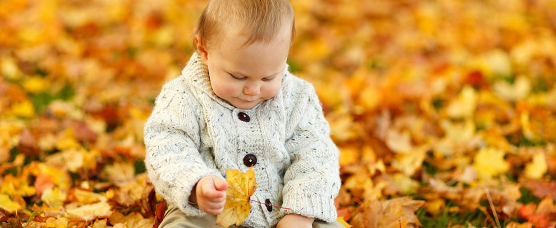 Fall Cleaning to Keep Your Allergies in Check